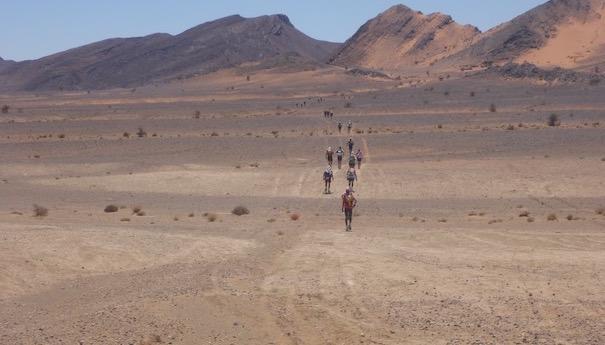 wieder 41 Kilometer_MDS 2016 Teil II_steinige Ebene