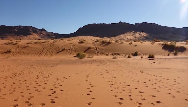 Nachmittag in den Dünen - Die lange Etappe beim Marathon des Sables