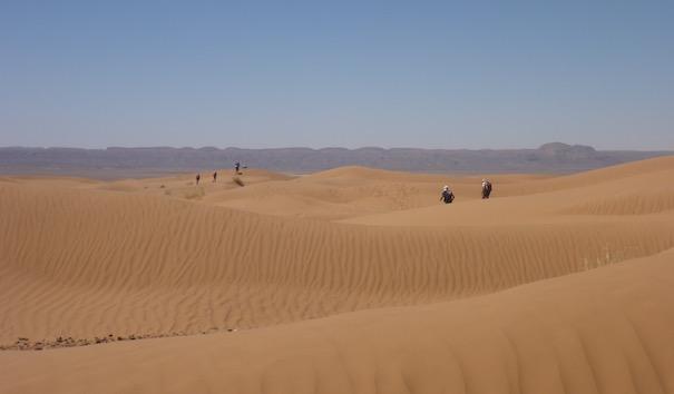 Blick über die Dünen - Die lange Etappe beim Marathon des Sables